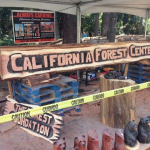 Forest Center Log Sign